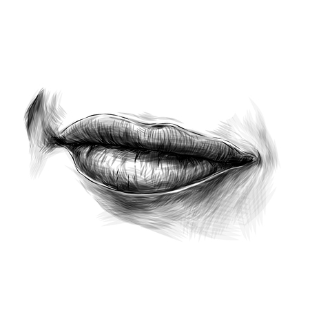 female lips and a slight smile with a raised area, sketch vector graphics monochrome illustration