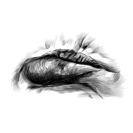 womens lips emotion resentment with protruding lower lip, sketch vector graphics monochrome illustration Illustration