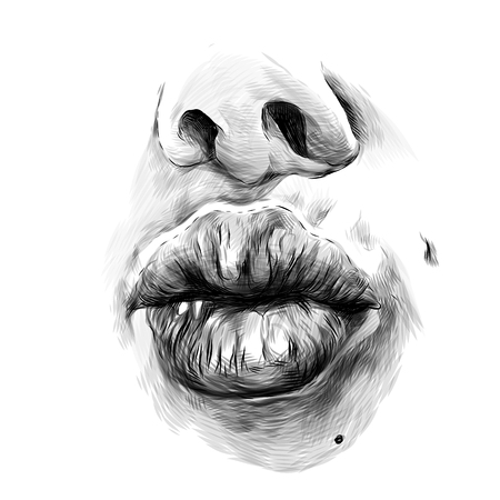 nose and feminine lips in the form of kissing, sketch vector graphics monochrome illustration