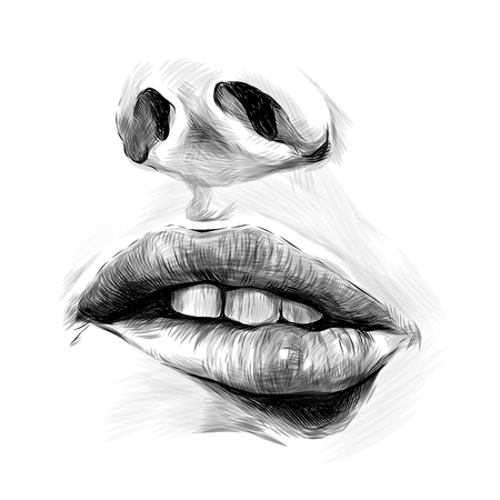 nose and female lip bitten by passion emotion, sketch vector graphics monochrome illustration