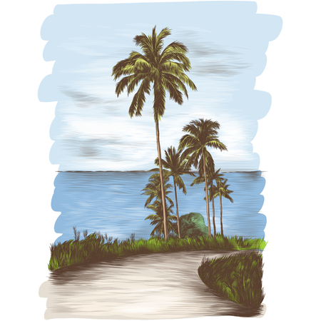 landscape road through the tropics with palm trees on the side of the sea background, sketch vector graphics color illustration