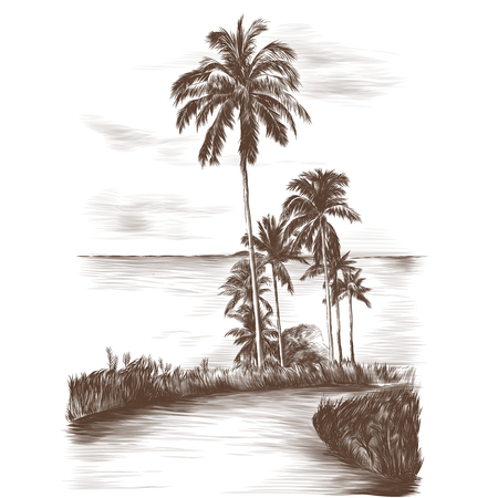 landscape road through the tropics with palm trees on the side of the sea background, sketch vector graphics monochrome Stok Fotoğraf - 102402208