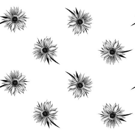 seamless texture of sunflower flowers, sketch vector graphics monochrome illustration Çizim
