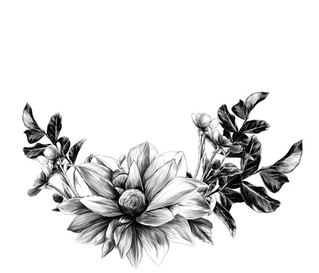 wreath in the form of a bouquet of flower Dahlia twigs with leaves and flowers buttercups, sketch vector graphics monochrome illustration Standard-Bild - 112584117