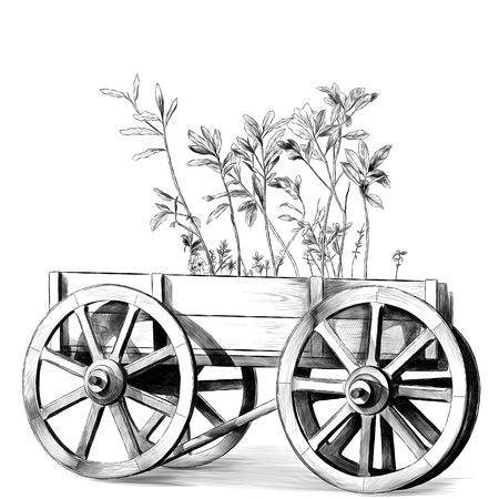 wooden cart with big wheels with plants inside on white background, sketch vector graphics monochrome illustration