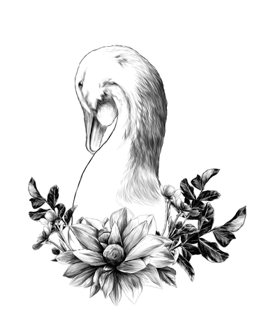 head of a goose with a wreath in the form of a frame from the bottom of the flower Dahlia twigs with leaves and flowers of buttercups, sketch vector graphics monochrome illustration Stock Photo