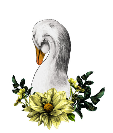 head of a goose with a wreath in the form of a frame from the bottom of the flower Dahlia twigs with leaves and flowers of buttercups, sketch vector graphics color illustration