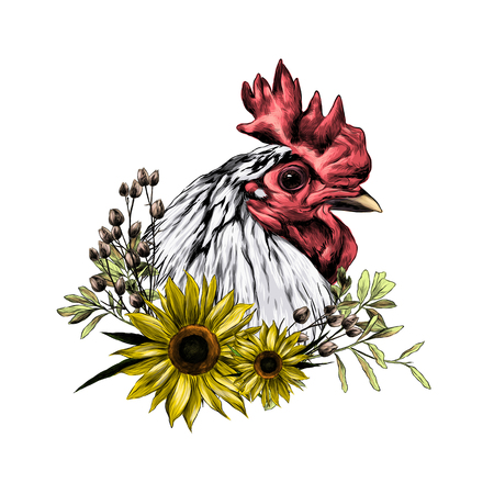 head of the rooster in profile with wreath in the form of a frame of sunflower leaves and dry grass from below, sketch vector graphics color illustration Stok Fotoğraf - 105399430