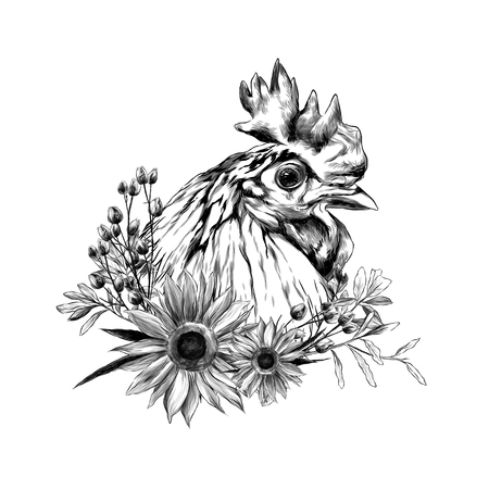 head of the rooster in profile with wreath in the form of a frame of sunflower leaves and dry grass from below, sketch vector graphics monochrome illustration