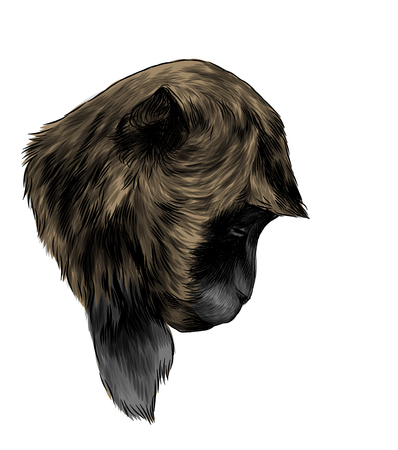 Monkey head lowered down with sad expression, sketch vector graphic color illustration on white background Stock Photo