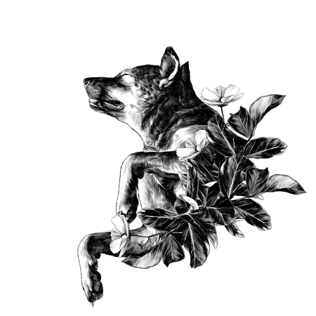 The dog raised face with eyes closed and legs bent in a pose of rest with the leaves in the wreath shape, sketch vector graphics monochrome illustration on white background Stock Photo