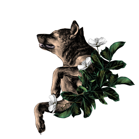 The dog raised face with eyes closed and legs bent in a pose of rest with the leaves in the wreath shape, sketch vector graphics color illustration on white background