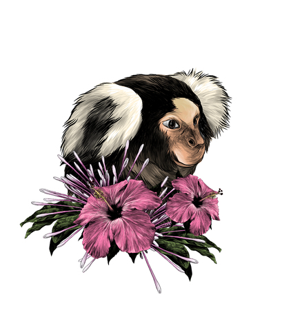monkey head in profile with wreath on neck from flowers clerodendrum and hibiscus with leaves, sketch vector graphics color illustration on white background