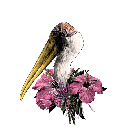 the head of a stork sideways in profile, with a wreath on the neck of hibiscus flowers and clerodendrum , sketch vector graphics color illustration on white background 스톡 콘텐츠