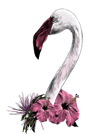 bird head Flamingo with long neck sideways in profile with a wreath of tropical flowers in the form of decoration, sketch vector graphics color illustration on white background