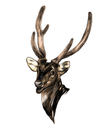 head of spotted deer with open mouth, sketch vector graphic color illustration on white background