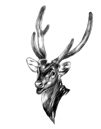 head of spotted deer with open mouth, sketch vector graphics monochrome illustration on white background