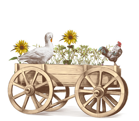 goose and rooster sitting in a wooden cart inside which grows grass and sunflowers, sketch vector graphics color illustration on white background Stock Photo