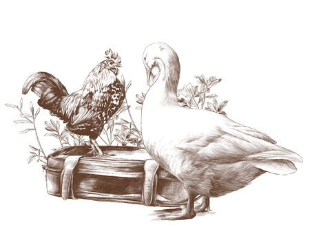 a cock stands on an old retro suitcase and a goose stands next in the background growing grass, sketch vector graphics monochrome illustration on white background