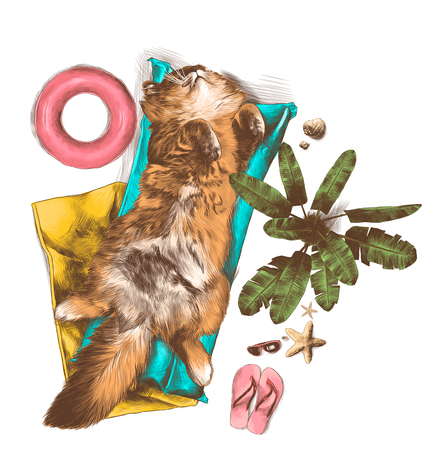 cat sleeping belly up under palm tree on mattress and towel surrounded by beach accessories nearby growing palm tree, sketch vector graphics color illustration on white background