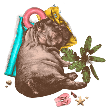 Hippo sleeping under a palm tree inflatable round mattress, and a towel surrounded by leisure facilities nearby growing tree and lying glasses shale and shells, sketch vector graphics color 일러스트