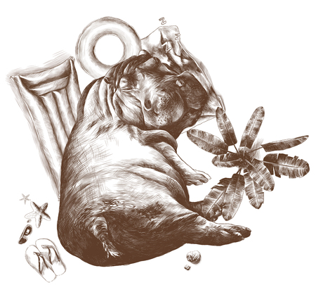 Hippo sleeping under a palm tree inflatable round mattress, and a towel surrounded by leisure facilities nearby growing tree and lying glasses shale and shells, sketch vector graphics monochrome