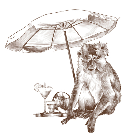 monkey sitting on the beach under a beach umbrella with a tropical flower on his head and standing next to a tray of beautiful cocktails and coconut, sketch vector graphics monochrome illustration
