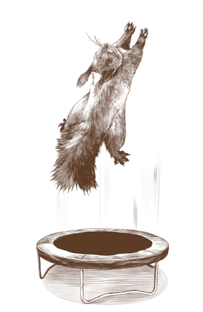 squirrel jumps on a trampoline and flies up, sketch vector graphics monochrome illustration on white background