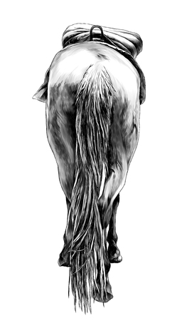 horse standing with saddle back view on ass and little head and ears sticking out and lifted one leg, sketch vector graphics monochrome illustration on white background
