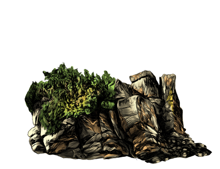 stone rock of boulders with Bush, trees and grass, sketch vector graphics color illustration on white background