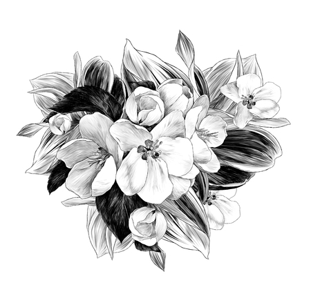 flower arrangement of Apple branches and flowers, sketch vector graphics monochrome illustration on white background