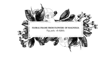 rectangular elongated frame decorated with Magnolia flowers and leaves, sketch vector graphics monochrome illustration on white background Illustration