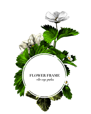 round frame decorated with flowers and strawberry leaves, sketch vector graphic color illustration on white background Çizim