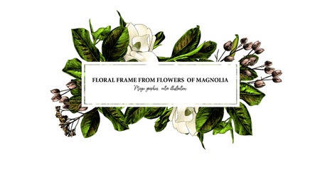 rectangular elongated frame decorated with Magnolia flowers and leaves, sketch vector graphic color illustration on white background