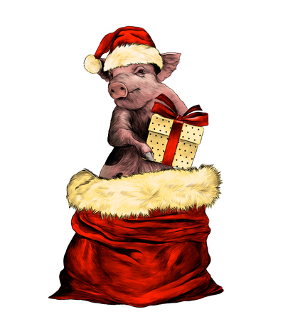 Christmas pig in hat and with gift box in paws stands in a bag to the waist, sketch vector graphic color illustration on white background Foto de archivo - 127054676
