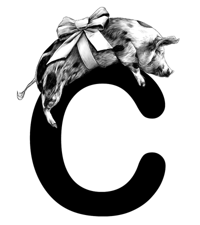 Christmas pig with bow on the body lies on the letter C part of the word Christmas, sketch vector graphics monochrome illustration on white background