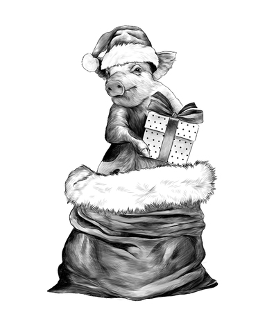 Christmas pig in hat and with gift box in paws stands in a bag to the waist, sketch vector graphics monochrome illustration on white background