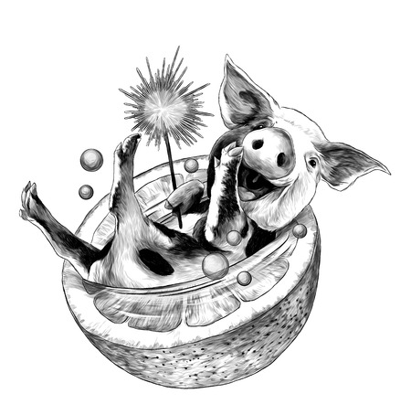 cheerful smiling Christmas pig with Bengal fire in its paw lies in half an orange and bubbles fly around, sketch vector graphics monochrome illustration on white background Banco de Imagens - 127054683
