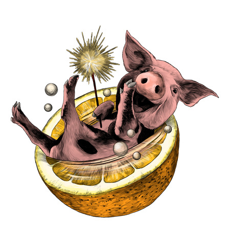 cheerful smiling Christmas pig with Bengal fire in its paw lies in half an orange and bubbles fly around, sketch vector graphic color illustration on white background