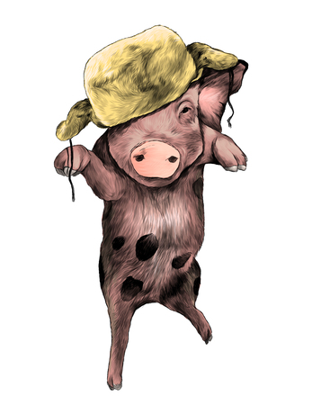 Christmas pig in warm hat on head Bouncing in the air on one paw with raised front paws, sketch vector graphic color illustration on white background