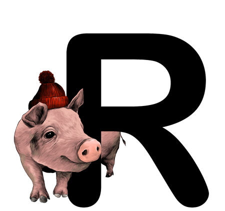Christmas pig in warm hat with pompom Peeps out from behind the letter R part of the word Christmas, sketch vector graphic color illustration on white background Illustration