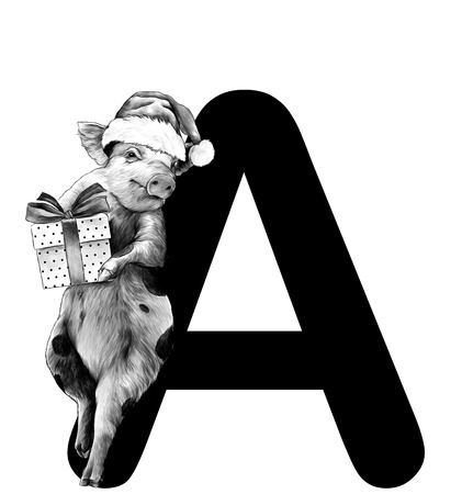 Christmas pig in a hat and with a gift box is leaning on the letter A part of the word Christmas, sketch vector graphics monochrome illustration on a white background