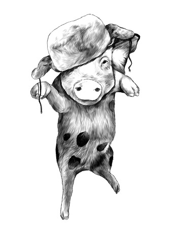 Christmas pig in warm hat on head Bouncing in the air on one paw with raised front paws, sketch vector graphic monochrome illustration on white background Ilustracja