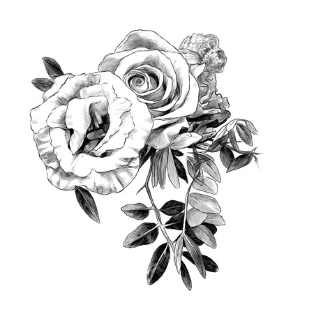flower arrangement of roses and small leaves, sketch vector graphics monochrome illustration on white background