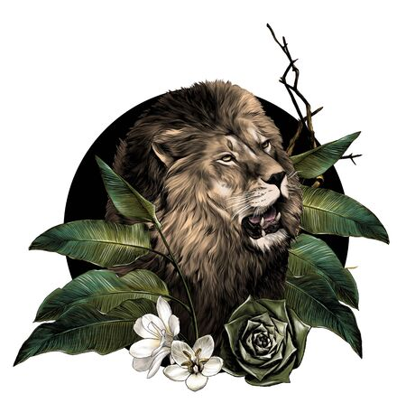lion head with open mouth surrounded by tropical plants leaves and flowers composition, sketch vector graphic color illustration on white background