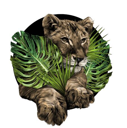 head of a little lion cub surrounded by tropical plants and leaves composition, sketch vector graphic color illustration on white background