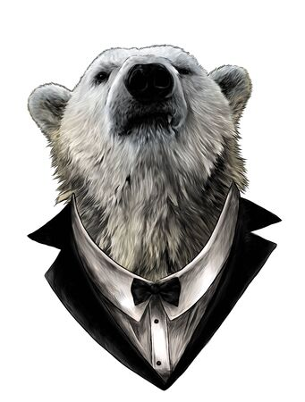 proud bear head looking confidently forward in jacket, shirt and bow tie, sketch vector graphics color illustration on white background