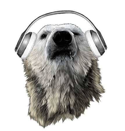 proud bear head looking confidently forward with headphones, sketch vector graphics color illustration on white background Ilustração