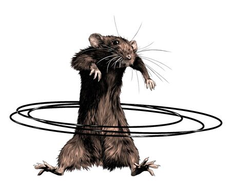mouse stands tall and twists Hoop at waist, sketch vector graphics color illustration on white background