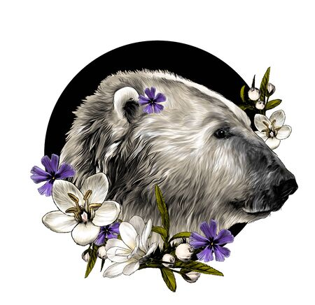 polar bear head in profile on a circle background with a composition of flowers, sketch vector graphics color illustration on a white background